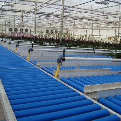 Plant storage with irrigation