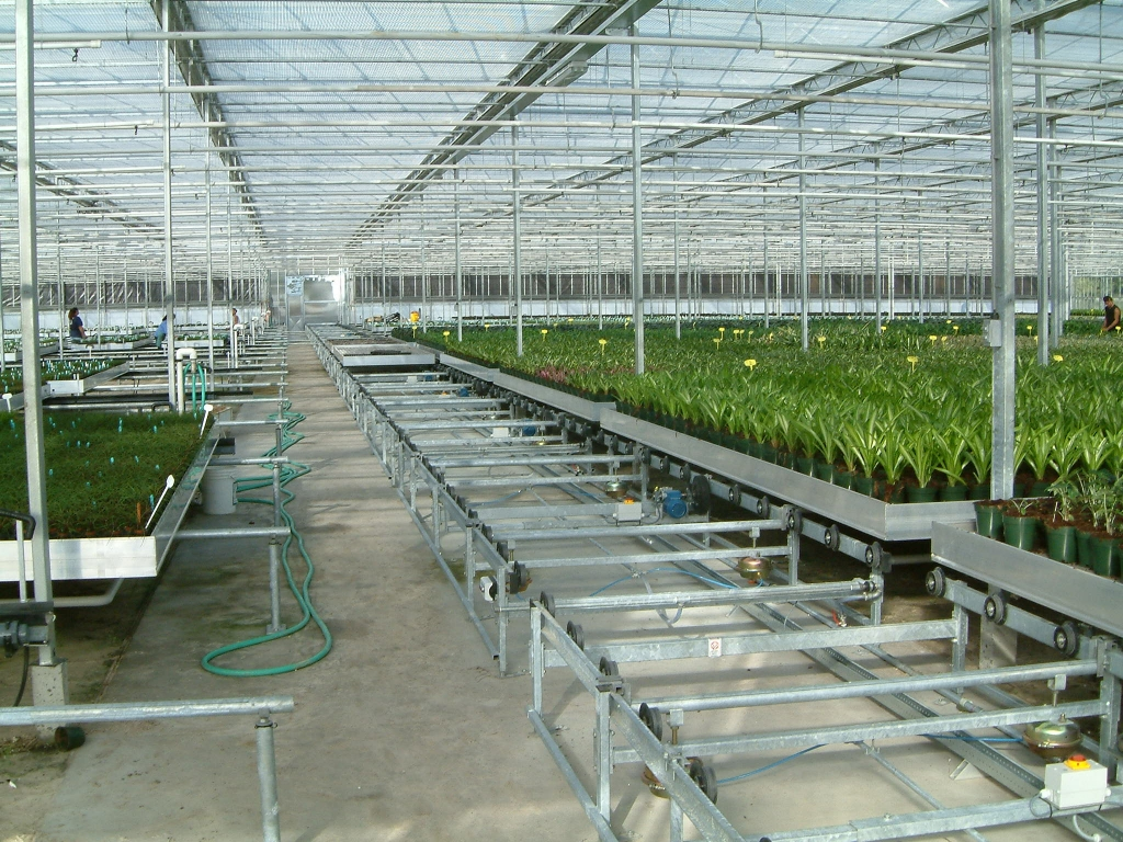 Transport Lines Tava Systems Greenhouse Automation