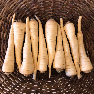 1.5lb Parsley Root