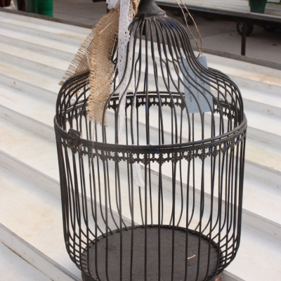 Birdcage Money Box