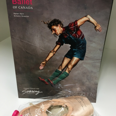 National Ballet Pointe Shoes worn by Jillian Vanstone