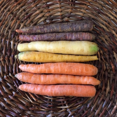 1lb Mixed Heirloom Carrots