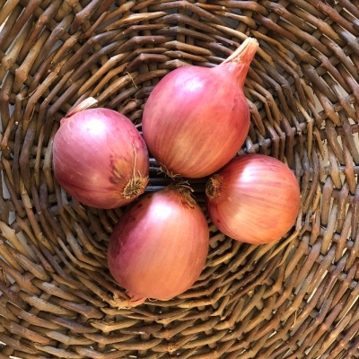 1lb French Rose Onions