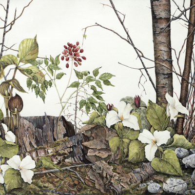 Pamela Meacher | Watercolour Painter