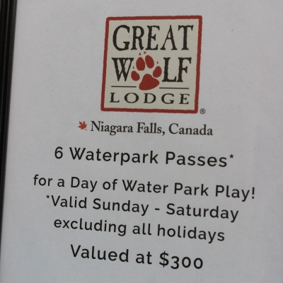 6 Water Park Passes for a Day at Great Wolf Lodge