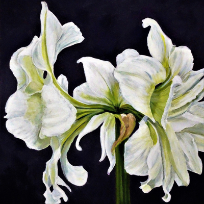 Sharon Nielsen - Painter