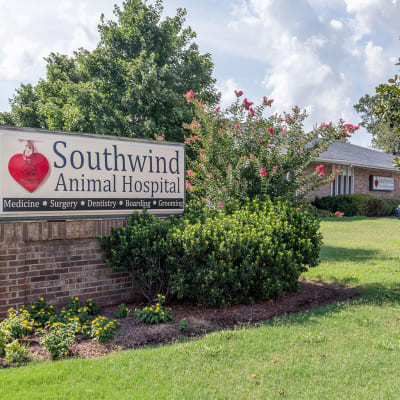 Welcome to Southwind Animal Hospital