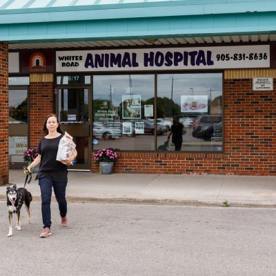 Welcome to Whites Road Animal Hospital