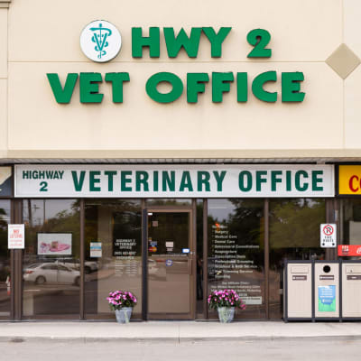 Welcome to Highway 2 Veterinary Office