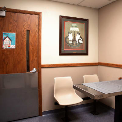 Treatment Room at Sharon Lakes Animal Hospital