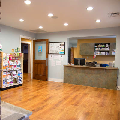 Providence Animal Hospital South in Waxhaw