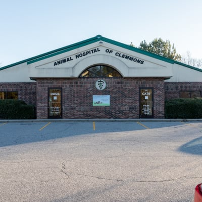 Animal Hospital of Clemmons