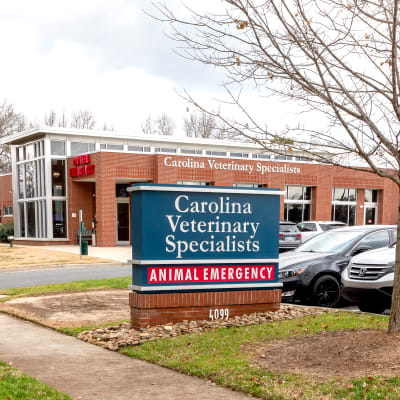Hospital images of Carolina Veterinary Specialists in Matthews