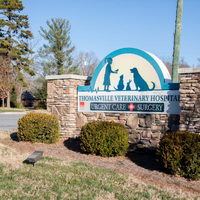 Thomasville Veterinary Hospital