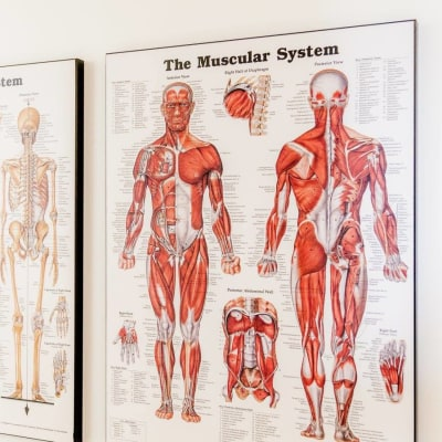 Manotick PhysioWorks in Ottawa