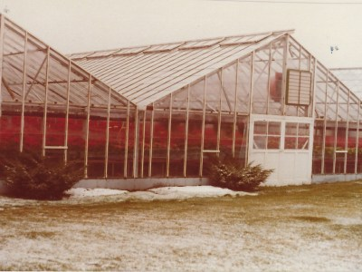 Ed Sobkowich Greenhouses LTD